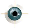 Augenarztpraxis Dr. Kanzow